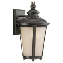 Sea Gull 89341BLE-780 - One Light Outdoor Cape May ENERGY STAR Wall Lantern