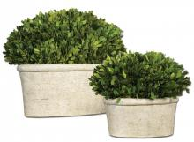 Uttermost 60107 - Uttermost Oval Domes Preserved Boxwood Set/2
